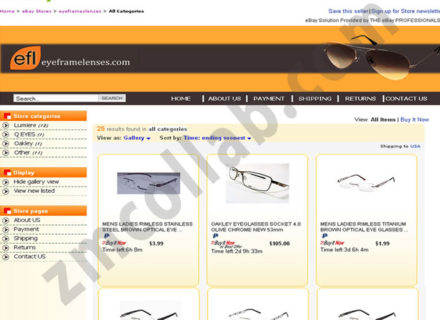ZMCollab ebay, amazon, shopify, wordpress, bigcommerce store design and product listing templates Eye Frame Lenses