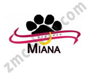 ZMCollab logo design Miana