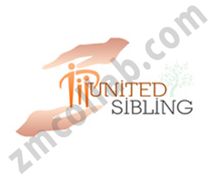 ZMCollab logo design United Sibling